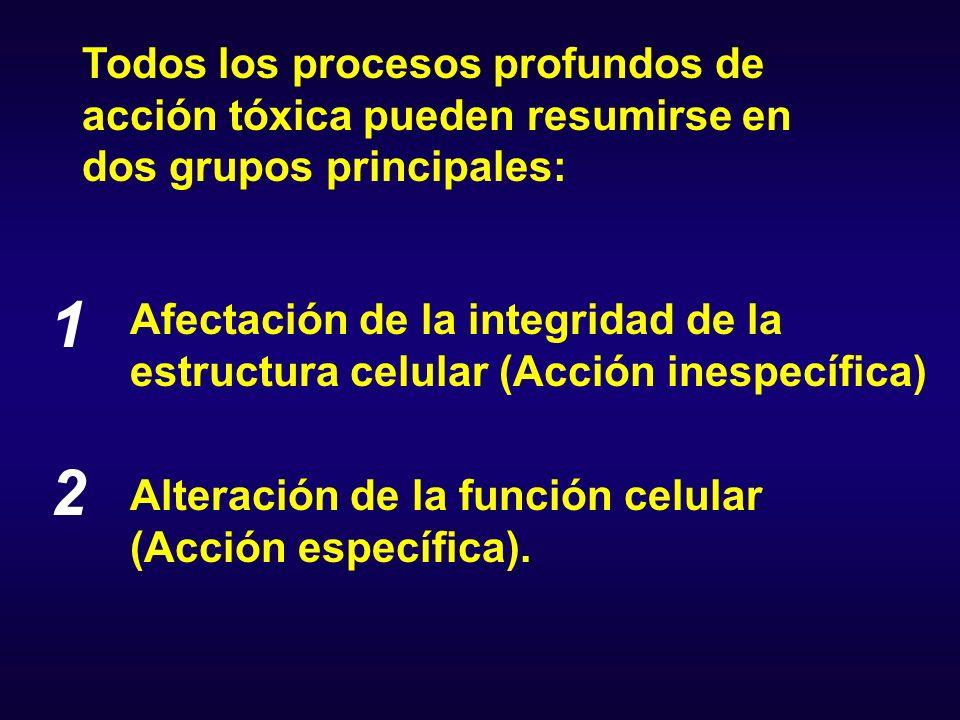 Destrucción celular total Alteración de la membrana Alteración de los órganos subcelulares Afectación de la integridad de la estructura celular (Acción inespecífica)