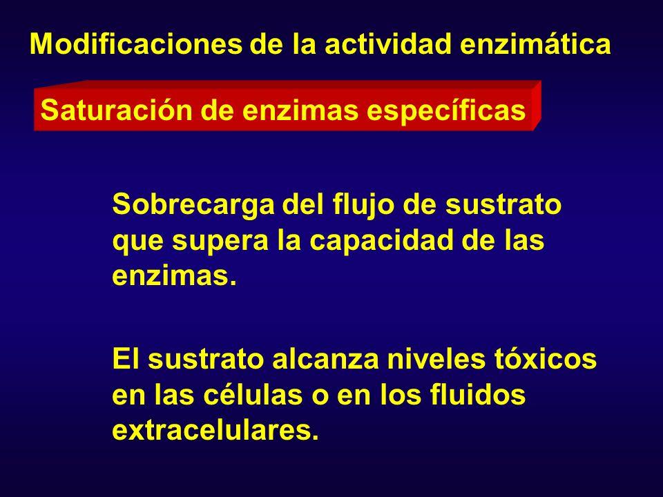 Un ejemplo de saturación metabólica es el que resulta en la inducción de metahemoglobinemia por nitritos y nitratos, compuestos aromáticos nitrados (Ej.: el nitrobenceno) o aminados (Ej.: fenilhidroxilamina), estos dos últimos son productos de la biotransformación de la anilina.