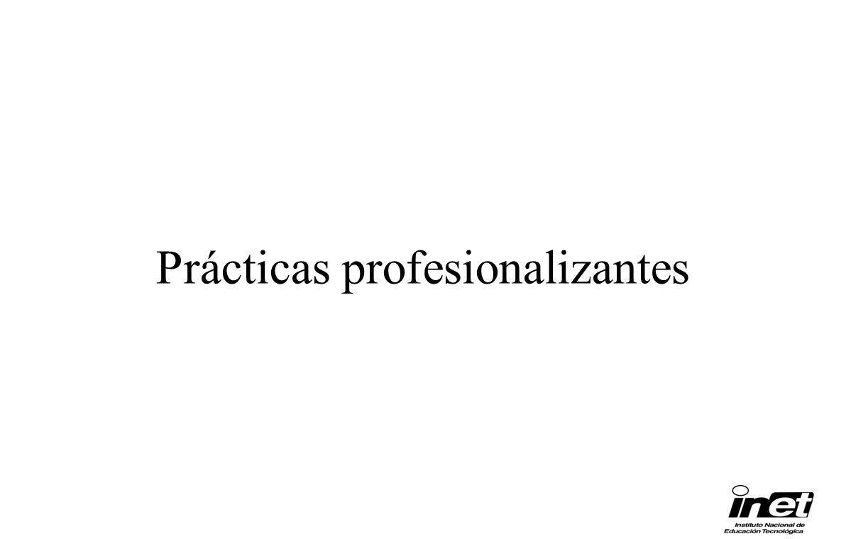 Prácticas profesionalizantes