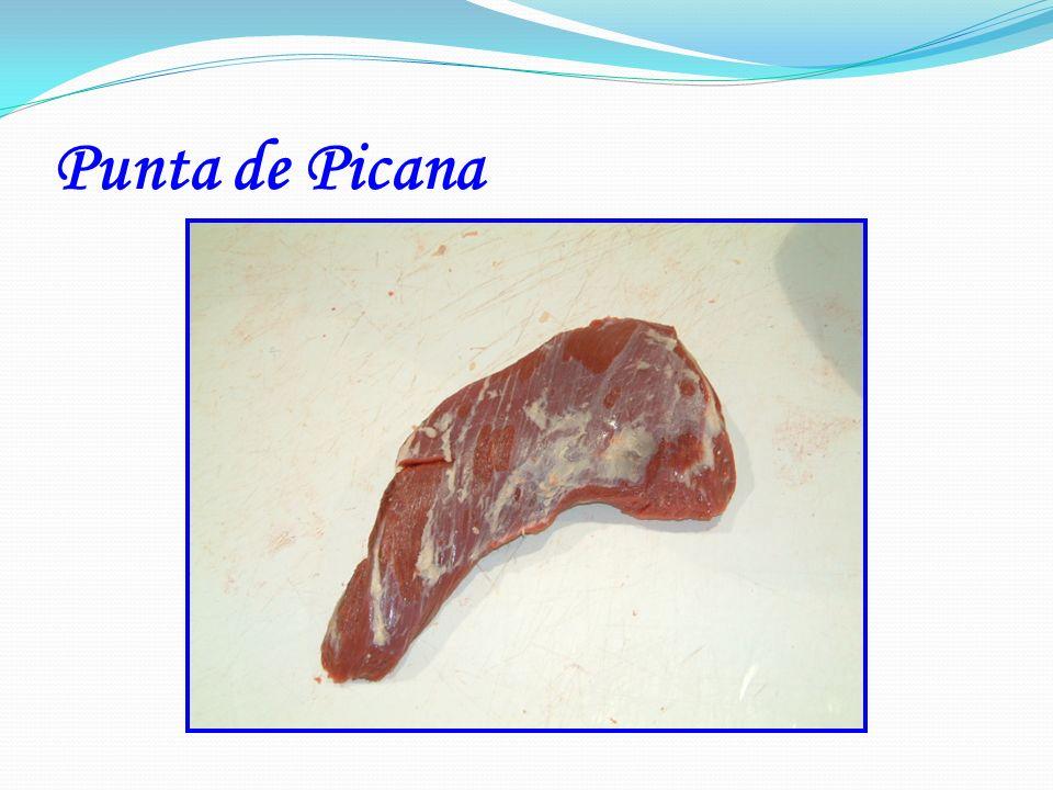 Punta de Picana