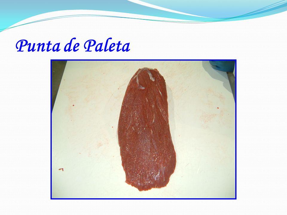 Punta de Paleta