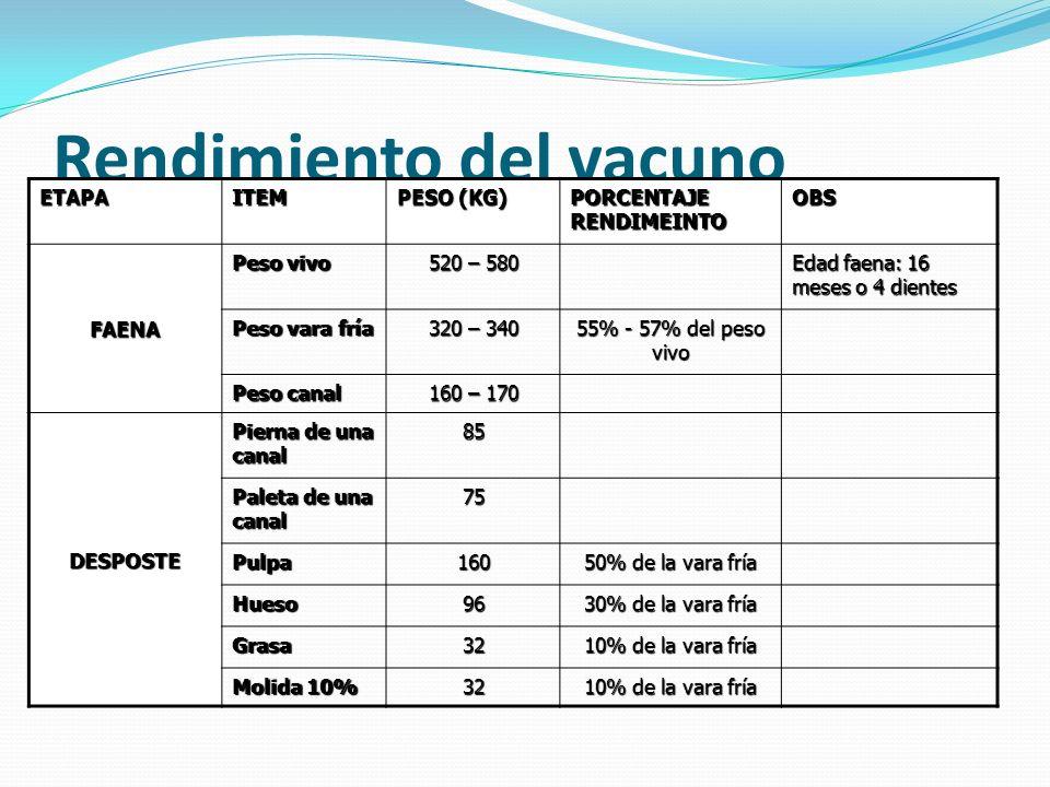 Rendimiento del vacuno ETAPAITEM PESO (KG) PORCENTAJE RENDIMEINTO OBS FAENA Peso vivo 520 – 580 Edad faena: 16 meses o 4 dientes Peso vara fría 320 –