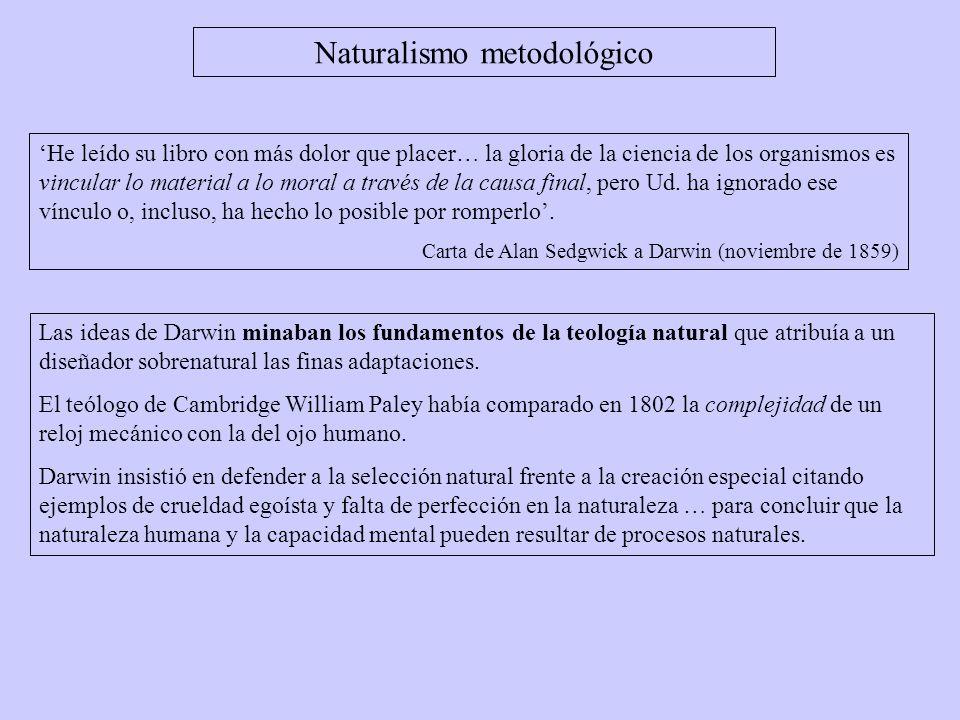 Las ideas de Darwin minaban los fundamentos de la teología natural que atribuía a un diseñador sobrenatural las finas adaptaciones. El teólogo de Camb