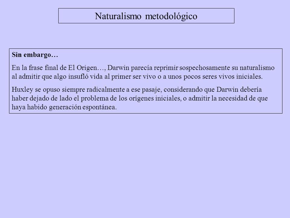 Sin embargo… En la frase final de El Origen…, Darwin parecía reprimir sospechosamente su naturalismo al admitir que algo insufló vida al primer ser vi