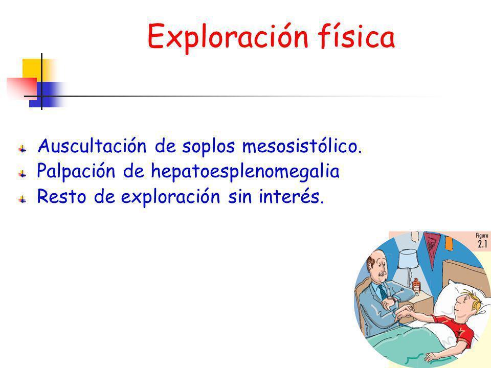 Exploración física Auscultación de soplos mesosistólico. Palpación de hepatoesplenomegalia Resto de exploración sin interés.