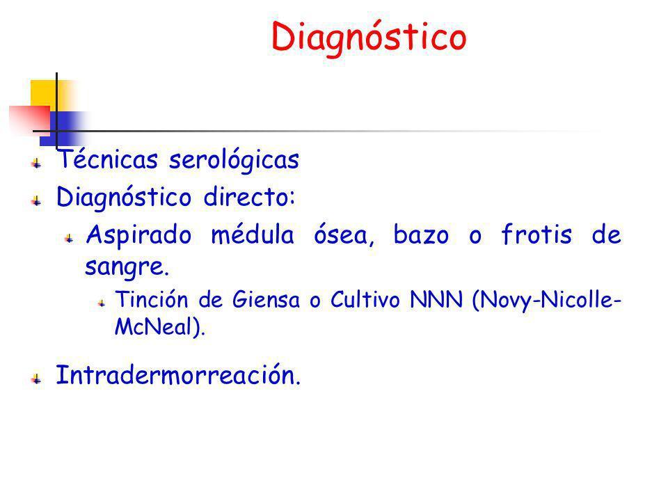 Diagnóstico Técnicas serológicas Diagnóstico directo: Aspirado médula ósea, bazo o frotis de sangre. Tinción de Giensa o Cultivo NNN (Novy-Nicolle- Mc
