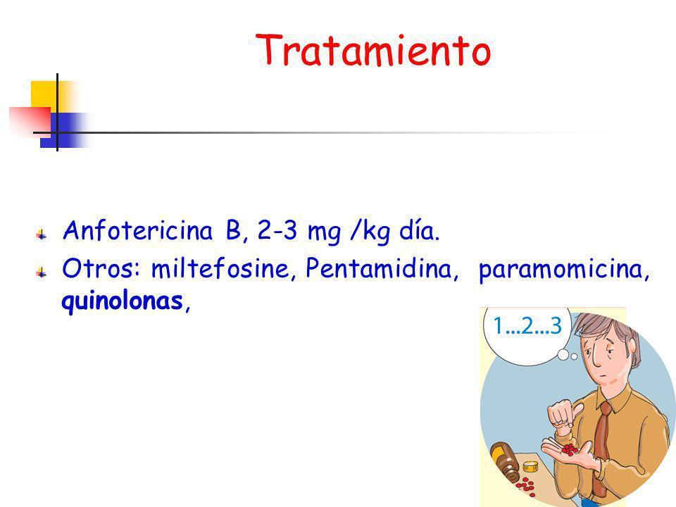 Tratamiento Anfotericina B, 2-3 mg /kg día. Otros: miltefosine, Pentamidina, paramomicina, quinolonas,