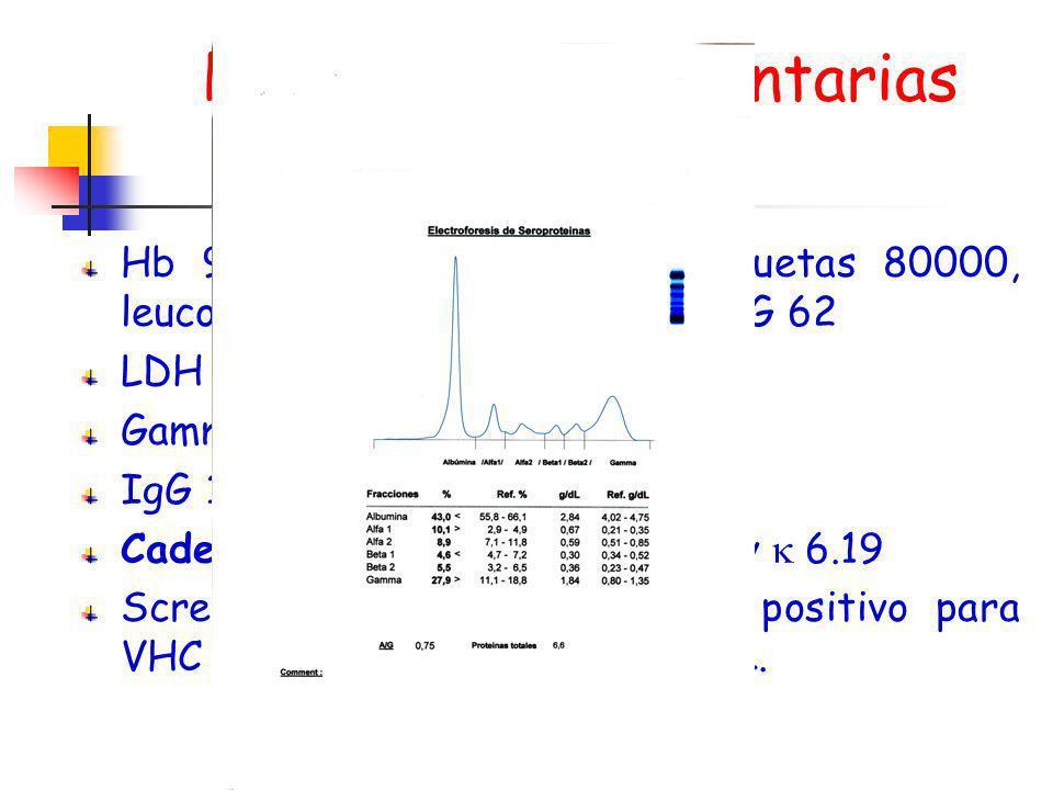 Pruebas complementarias Hb 9, Hcto 27, VCM 79, plaquetas 80000, leucocitos 2530 (59 N, 30 L). VSG 62 LDH 1004, PCR 5.1. Gamma 27.9, Alb 43%, IgG 1851,