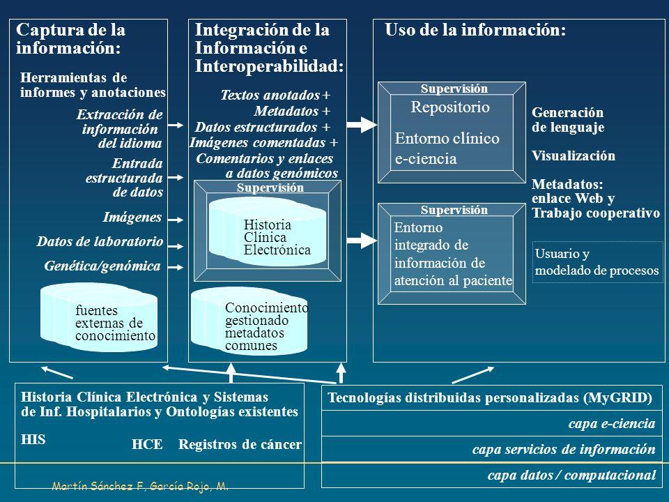 Martín Sánchez F, García Rojo, M. Captura de la información: Integración de la Información e Interoperabilidad: Uso de la información: Herramientas de