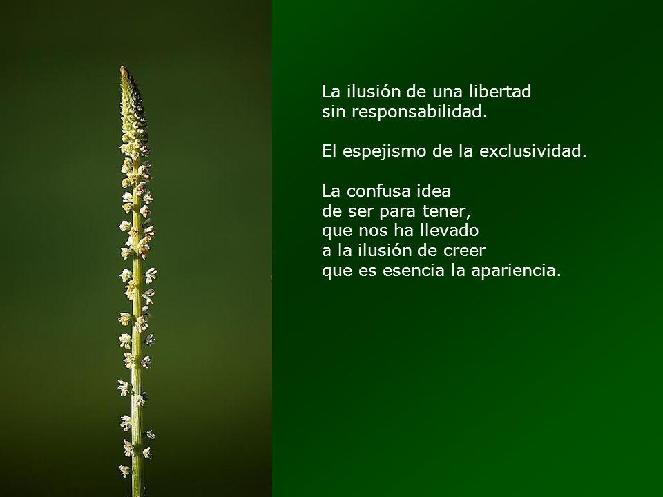 La ilusión de una libertad sin responsabilidad.El espejismo de la exclusividad.