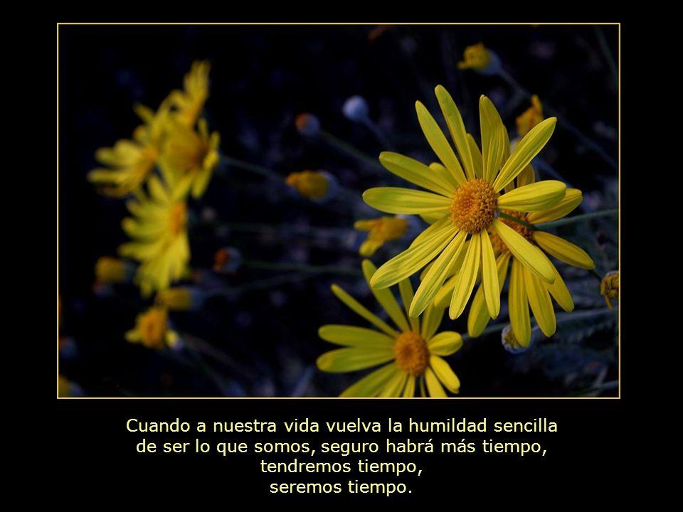 Cuando a nuestra vida vuelva la humildad sencilla de ser lo que somos, seguro habrá más tiempo, tendremos tiempo, seremos tiempo.