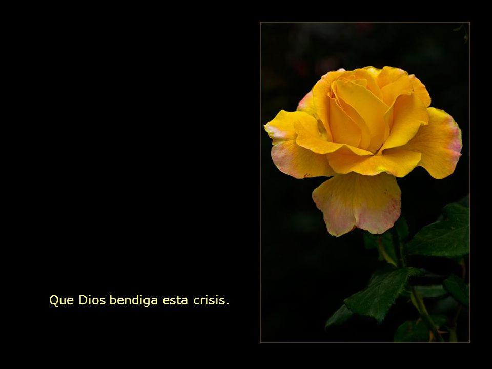 Que Dios bendiga esta crisis.