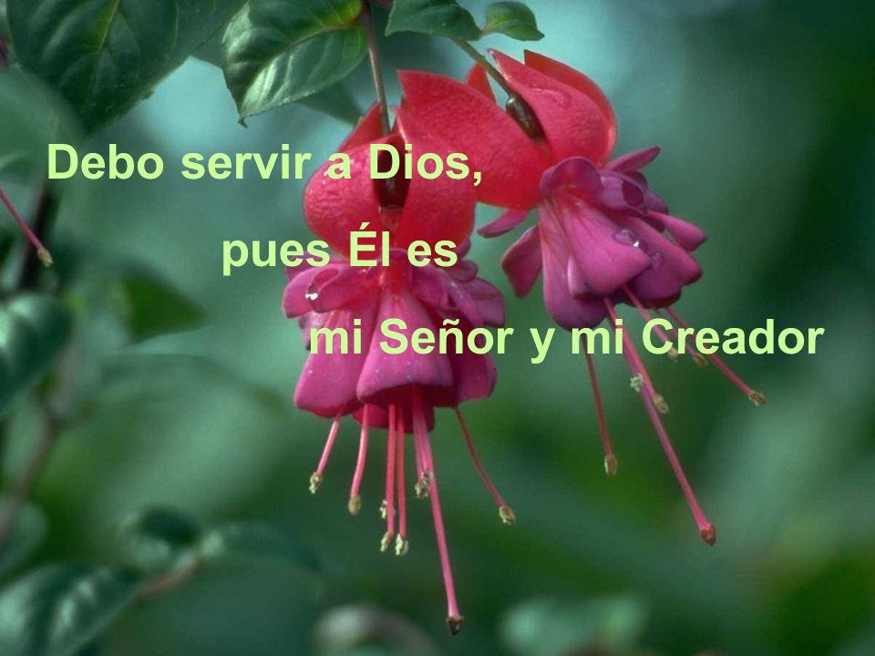 Bendigamos a Dios y a nuestra Purísima Madre, que velan sobre nosotros
