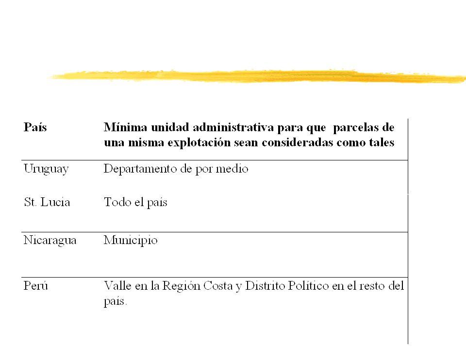 El Censo Nacional Agropecuario de Nicaragua 2001 zGRUPOS DE ACTIVIDADES: 4Levantamiento 4PES 4Construcción del marco múltiple para el PNEA 4Estudios especiales