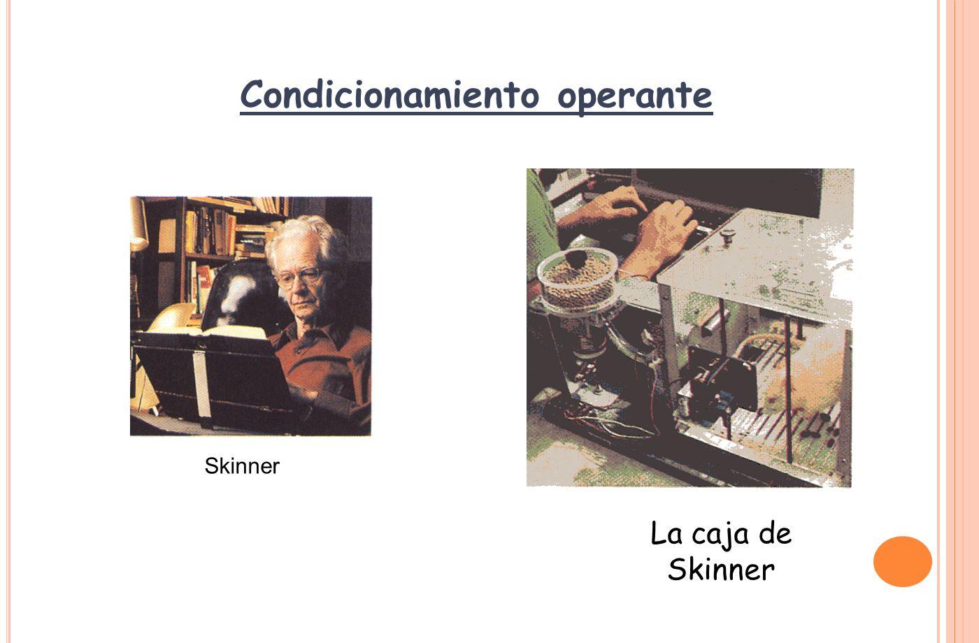 CONDICIONAMIENTO OPERANTE B.F.Skinner (1904 - 1990) 1.