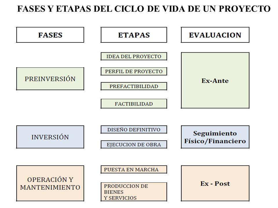 FASES Y ETAPAS DEL CICLO DE VIDA DE UN PROYECTO