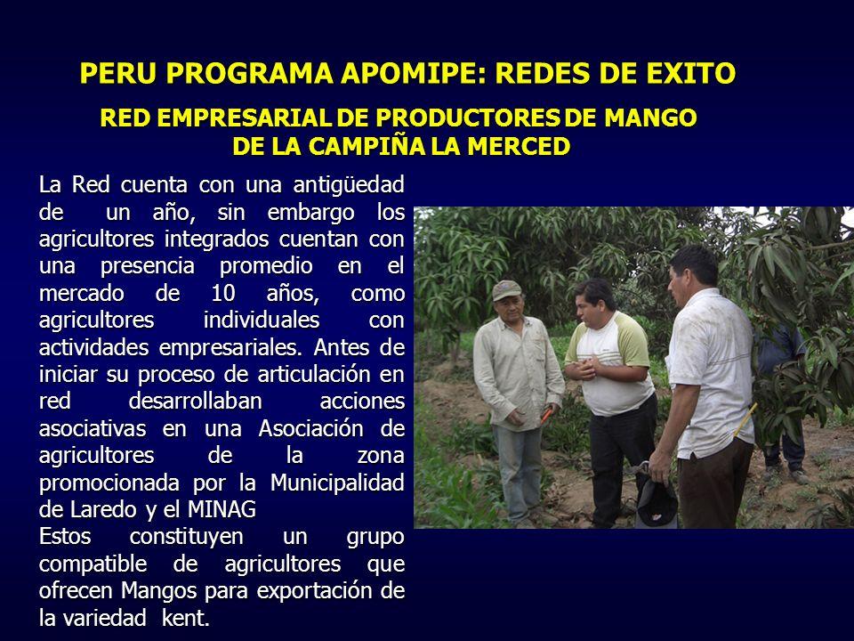 RED EMPRESARIAL DE PRODUCTORES DE MANGO DE LA CAMPIÑA LA MERCED La Red cuenta con una antigüedad de un año, sin embargo los agricultores integrados cuentan con una presencia promedio en el mercado de 10 años, como agricultores individuales con actividades empresariales.