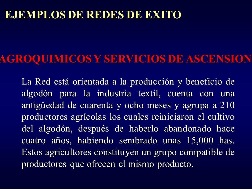 EJEMPLOS DE REDES DE EXITO AGROQUIMICOS Y SERVICIOS DE ASCENSION La Red está orientada a la producción y beneficio de algodón para la industria textil