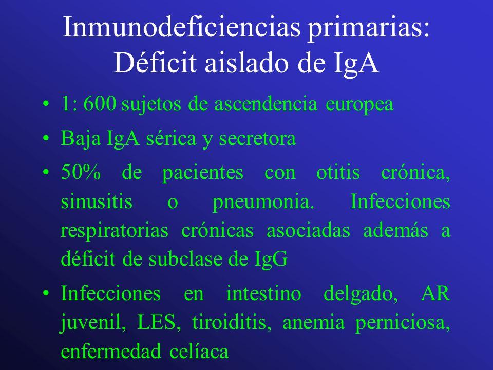 Inmunodeficiencias primarias: Déficit aislado de IgA 1: 600 sujetos de ascendencia europea Baja IgA sérica y secretora 50% de pacientes con otitis cró