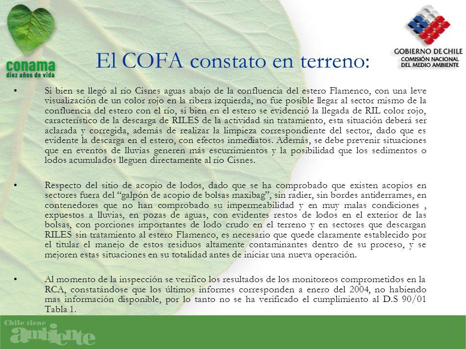 El COFA constato en terreno: Si bien se llegó al río Cisnes aguas abajo de la confluencia del estero Flamenco, con una leve visualización de un color