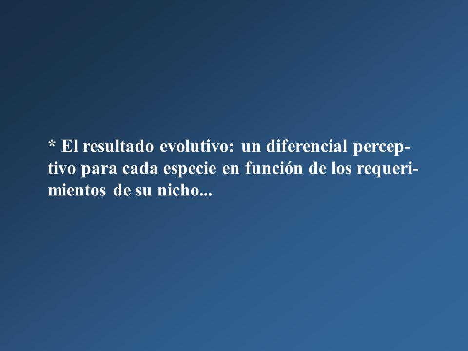 * El resultado evolutivo: un diferencial percep- tivo para cada especie en función de los requeri- mientos de su nicho...