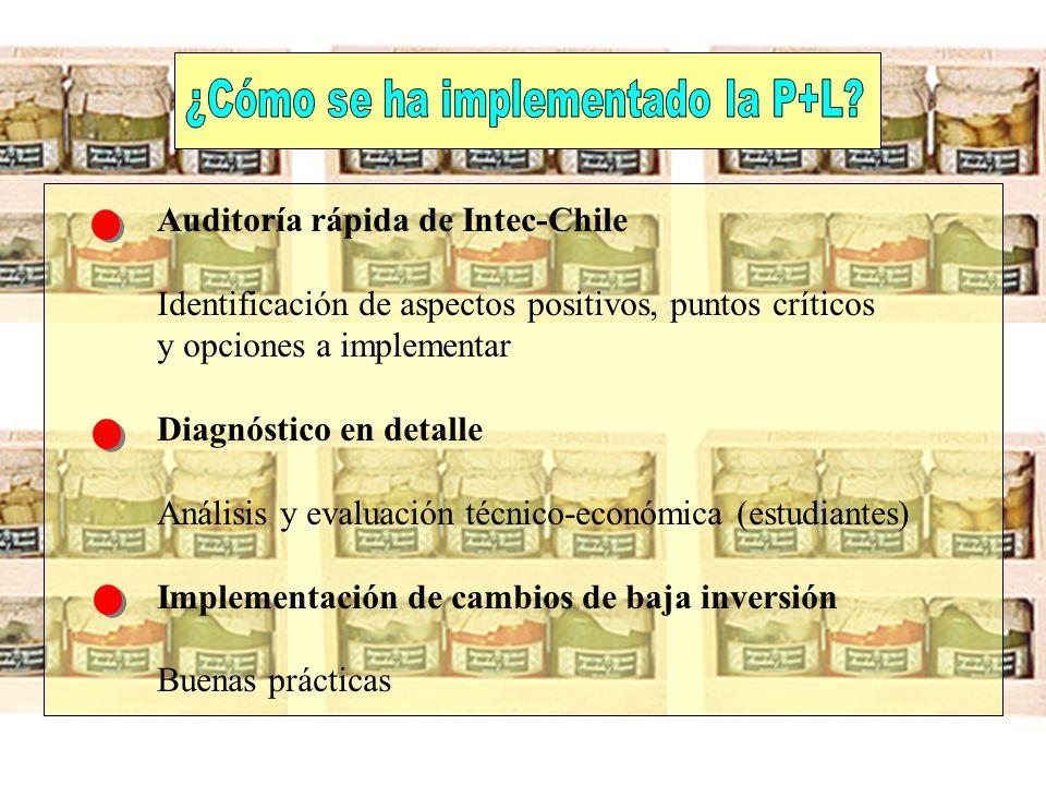 Auditoría rápida de Intec-Chile Identificación de aspectos positivos, puntos críticos y opciones a implementar Diagnóstico en detalle Análisis y evalu