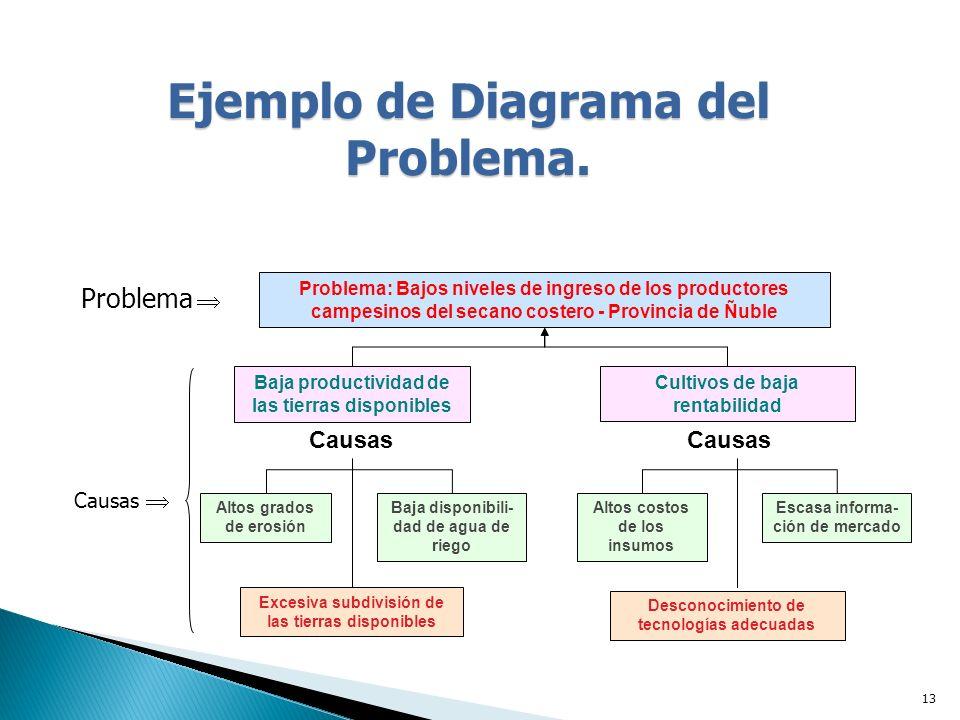 13 Ejemplo de Diagrama del Problema.