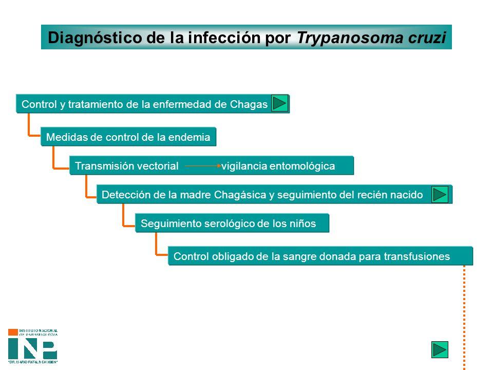 Diagnóstico de la infección por Trypanosoma cruzi Medidas de control de la endemia Control y tratamiento de la enfermedad de Chagas (1) Transmisión vectorial vigilancia entomológica Detección de la madre Chagásica y seguimiento del recién nacido Seguimiento serológico de los niños Control obligado de la sangre donada para transfusiones
