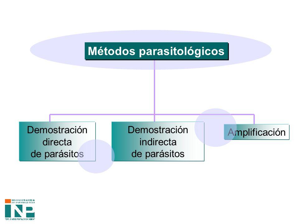 Métodos parasitológicos Demostración directa de parásitos Amplificación Demostración indirecta de parásitos