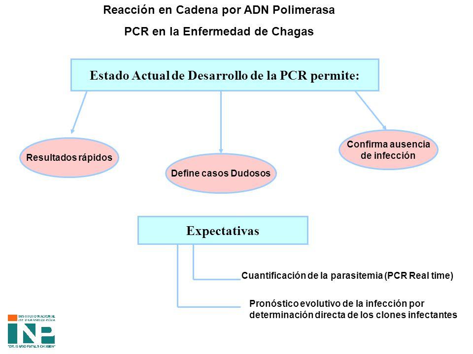 Reacción en Cadena por ADN Polimerasa PCR en la Enfermedad de Chagas Estado Actual de Desarrollo de la PCR permite: Resultados rápidos Define casos Dudosos Confirma ausencia de infección Expectativas Cuantificación de la parasitemia (PCR Real time) Pronóstico evolutivo de la infección por determinación directa de los clones infectantes
