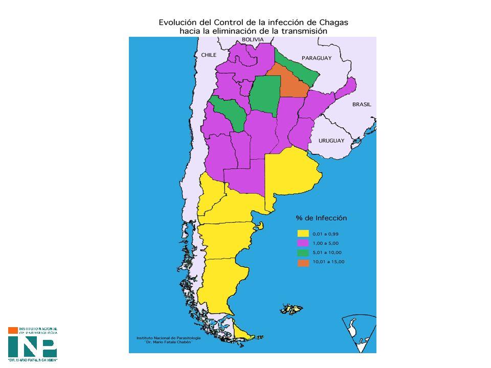 COMPORTAMIENTO DE LOS ANTICUERPOS ESPECIFICOS EN NIÑOS HIJOS DE MADRE CHAGASICA AL 6° MES SIN TRANSMISION CONNATAL AÑON° NIÑOSELISA/HAIELISA/IFIHAI/IFIDISCORDANTE 2NR/1R TOTAL 19992400101011 20001820111113 200120000012 20022000121518 TOTAL822 100% 03 0.4% 3 0.4% 48 5.8% 54 6.6%