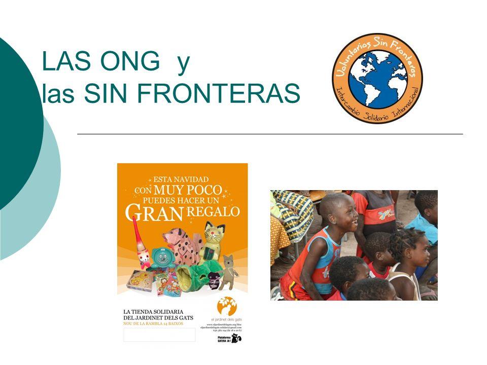 ONG – la organización no gubernamental ¿A qué se dedica.
