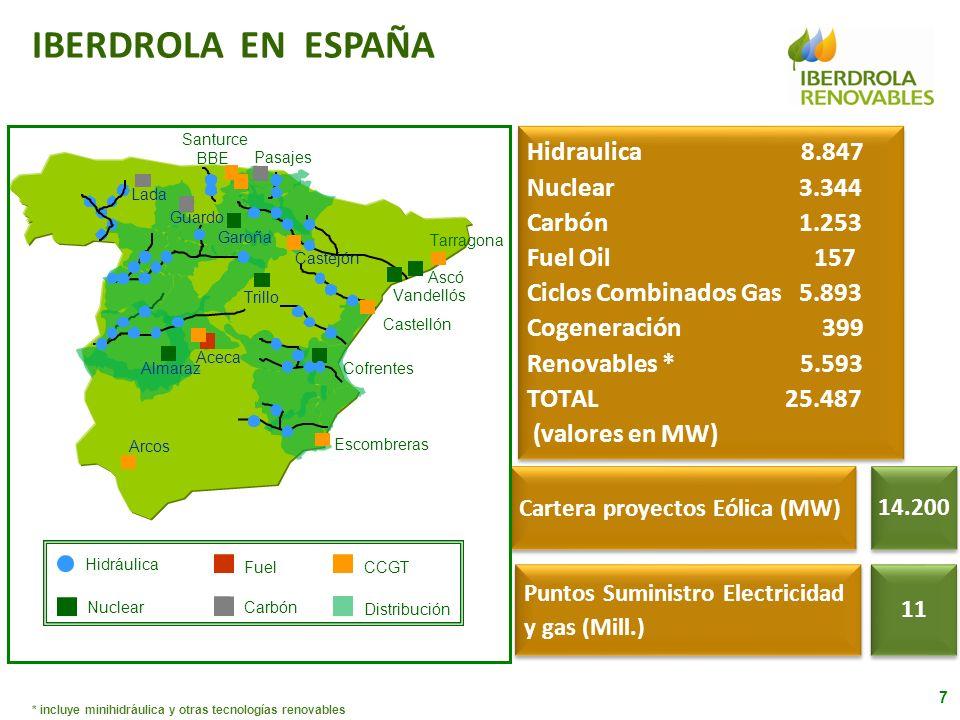 * incluye minihidráulica y otras tecnologías renovables IBERDROLA EN ESPAÑA Hidráulica Nuclear Fuel Carbón CCGT Distribución 14.200 11 Hidraulica 8.84