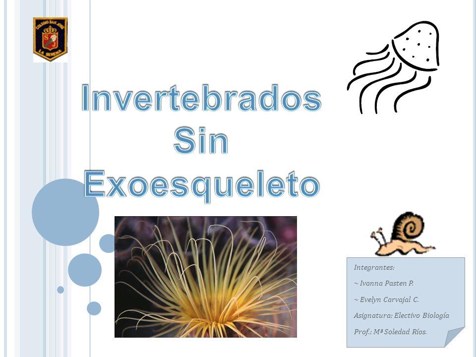 Integrantes: ~ Ivanna Pasten P.~ Evelyn Carvajal C.