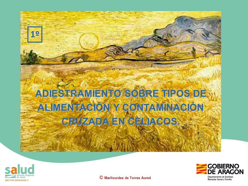 ADIESTRAMIENTO SOBRE TIPOS DE ALIMENTACIÓN Y CONTAMINACIÓN CRUZADA EN CELIACOS. 1º © Marilourdes de Torres Aured