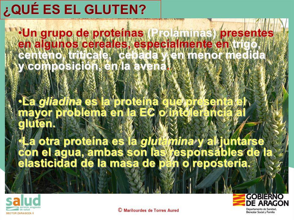 Un grupo de proteínas (Prolaminas) presentes en algunos cereales, especialmente en trigo, centeno, triticale, cebada y en menor medida y composición,