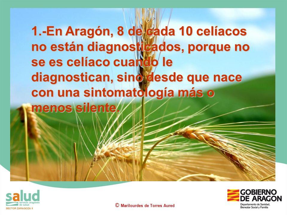1.-En Aragón, 8 de cada 10 celíacos no están diagnosticados, porque no se es celíaco cuando le diagnostican, sino desde que nace con una sintomatologí