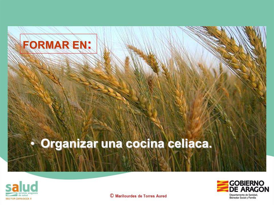 Organizar una cocina celiaca.Organizar una cocina celiaca. © Marilourdes de Torres Aured FORMAR EN :