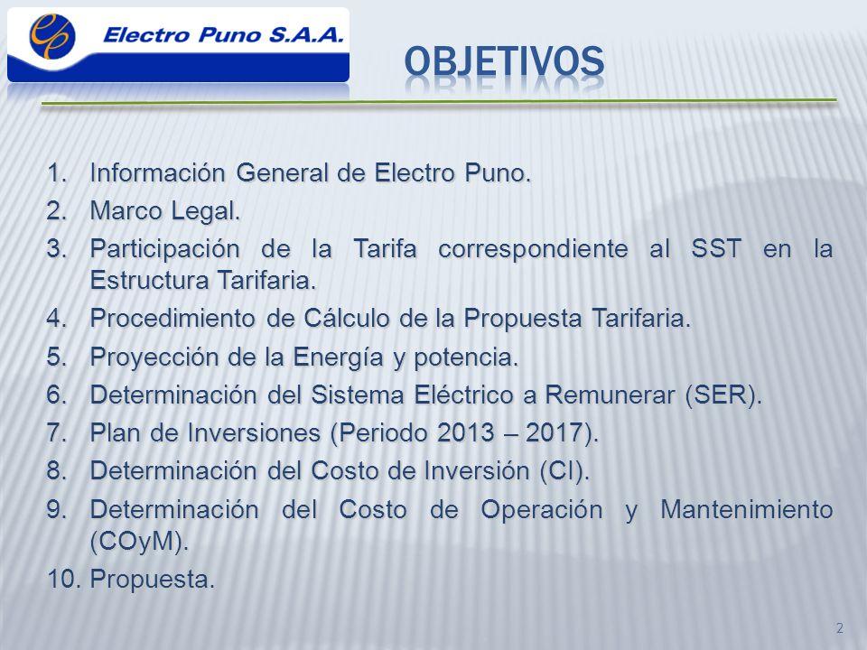 3 Información General de Electro Puno