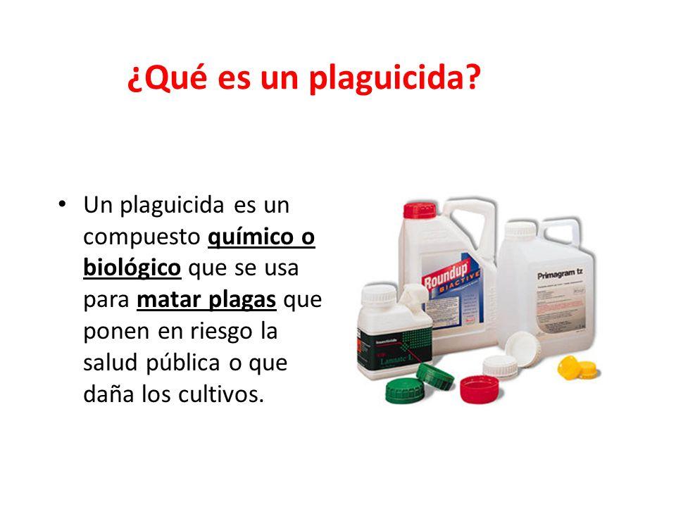 RIESGOS DE AGROQUÍMICOS EN LA NUTRICIÓN Y SEGURIDAD ALIMENTARIA JAVIER EDUARDO CURO YLLACONZA C.N.P.