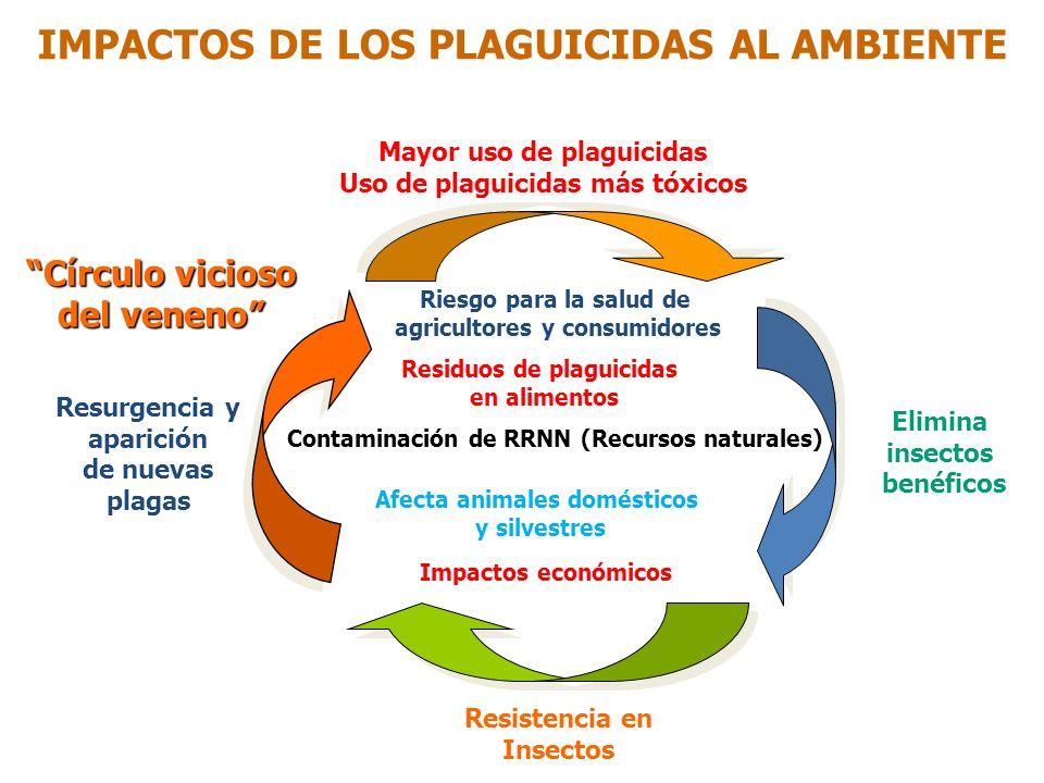 Aplicación IMPACTOS DE LOS PLAGUICIDAS AL AMBIENTE Agua subterránea Residuo Lixiviación Agroecosistema Destrucción plagas parasitoides predadores poli