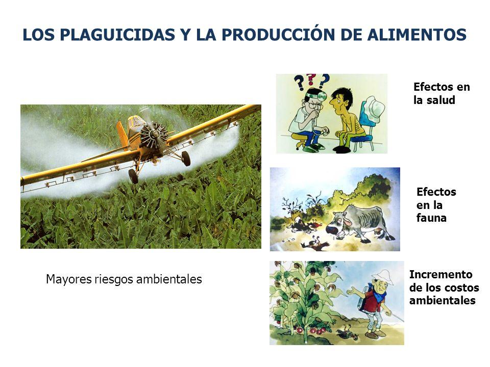 LOS PLAGUICIDAS Y LA PRODUCCIÓN DE ALIMENTOS Efectos en la salud Efectos en la fauna Incremento de los costos ambientales Mayores riesgos ambientales