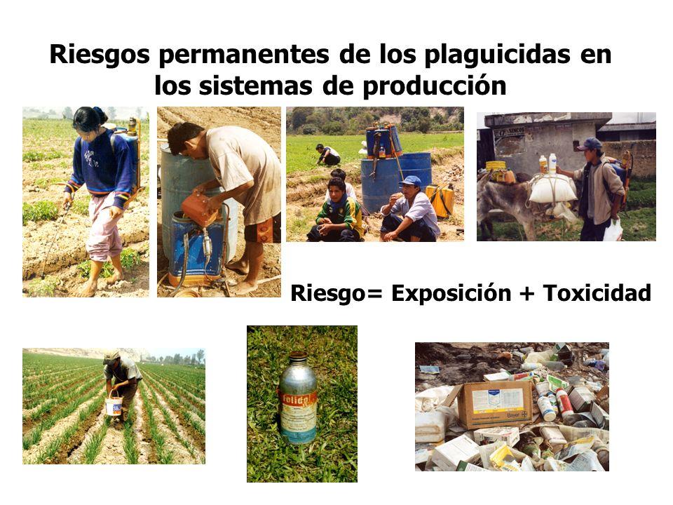 Riesgos permanentes de los plaguicidas en los sistemas de producción Riesgo= Exposición + Toxicidad