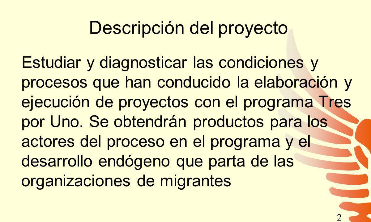 Descripción del proyecto Estudiar y diagnosticar las condiciones y procesos que han conducido la elaboración y ejecución de proyectos con el programa
