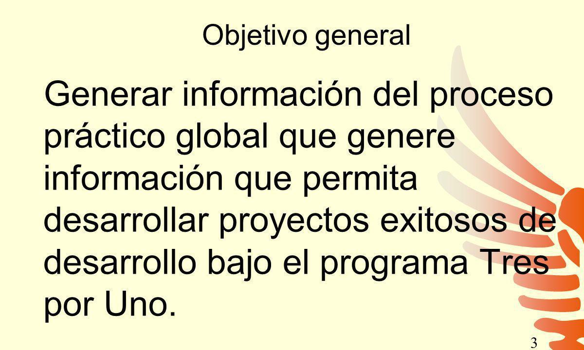 Objetivo general Generar información del proceso práctico global que genere información que permita desarrollar proyectos exitosos de desarrollo bajo