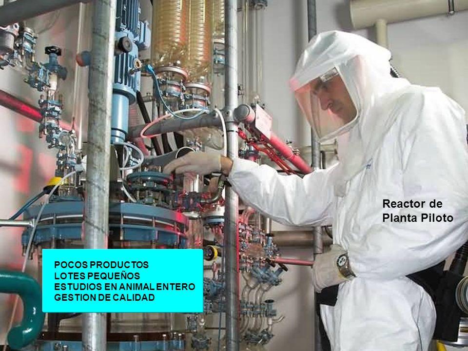 9 Reactor de Planta Piloto POCOS PRODUCTOS LOTES PEQUEÑOS ESTUDIOS EN ANIMAL ENTERO GESTION DE CALIDAD