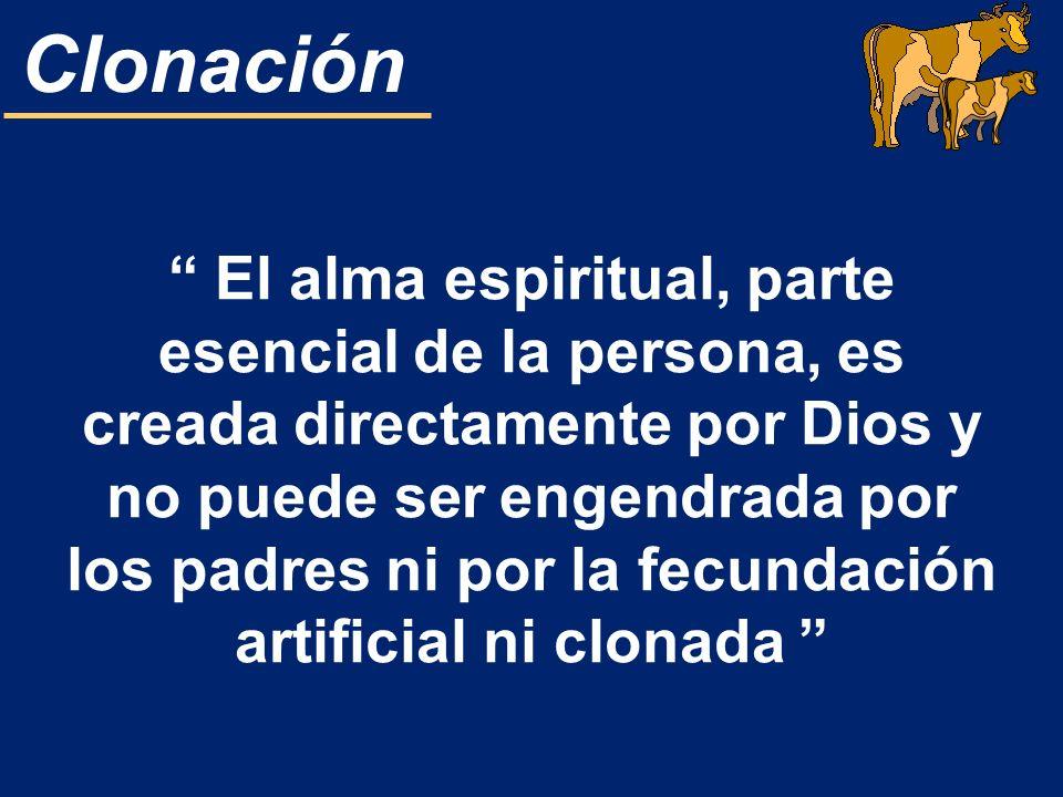 Clonación El alma espiritual, parte esencial de la persona, es creada directamente por Dios y no puede ser engendrada por los padres ni por la fecunda