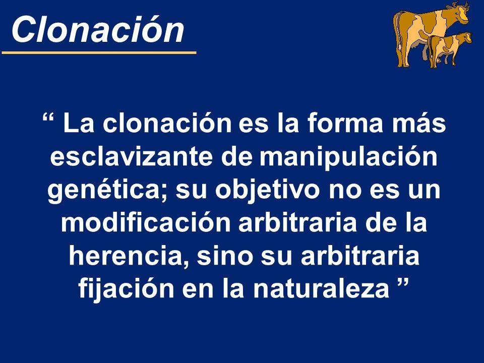 Clonación La clonación es la forma más esclavizante de manipulación genética; su objetivo no es un modificación arbitraria de la herencia, sino su arb
