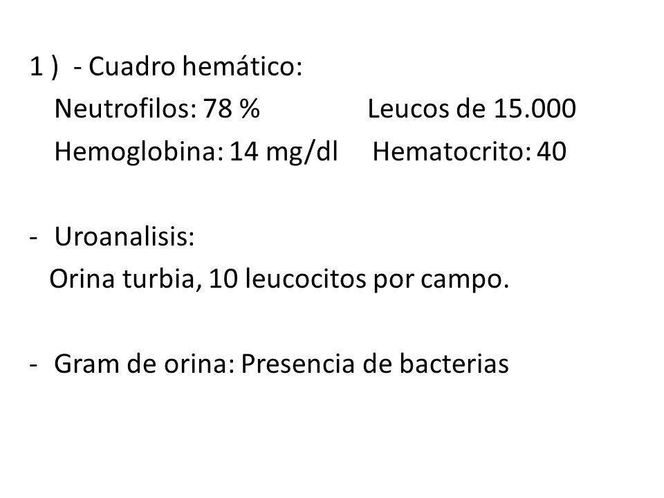 1 ) - Cuadro hemático: Neutrofilos: 78 % Leucos de 15.000 Hemoglobina: 14 mg/dl Hematocrito: 40 -Uroanalisis: Orina turbia, 10 leucocitos por campo. -