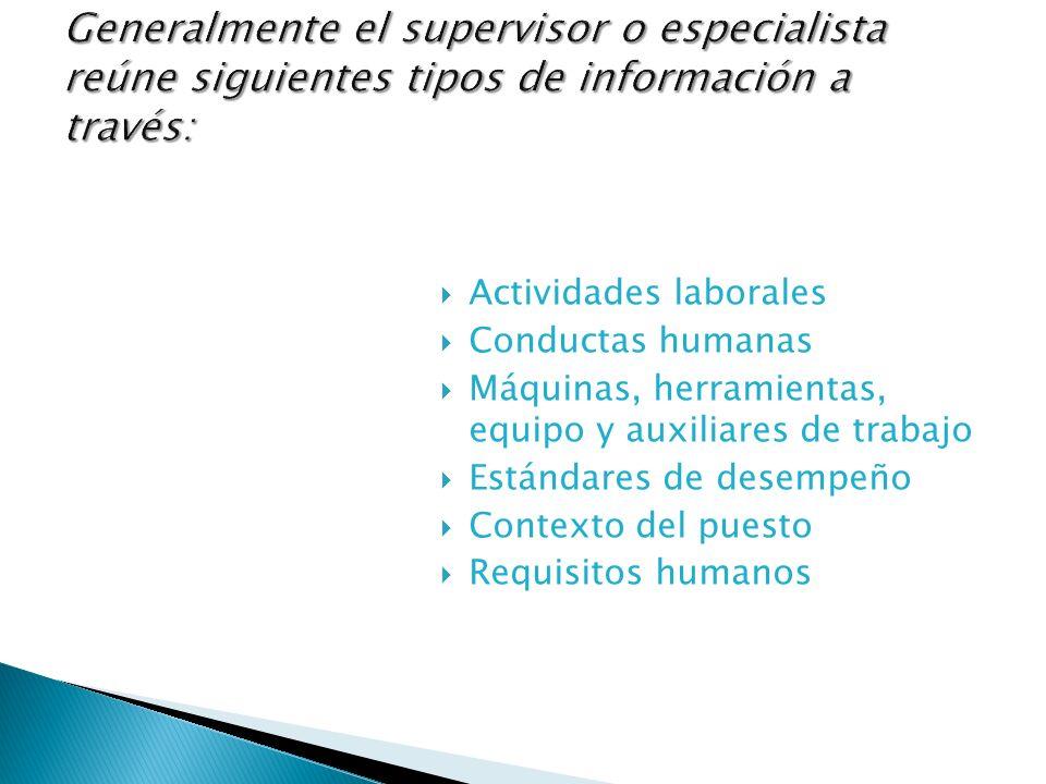 Actividades laborales Conductas humanas Máquinas, herramientas, equipo y auxiliares de trabajo Estándares de desempeño Contexto del puesto Requisitos